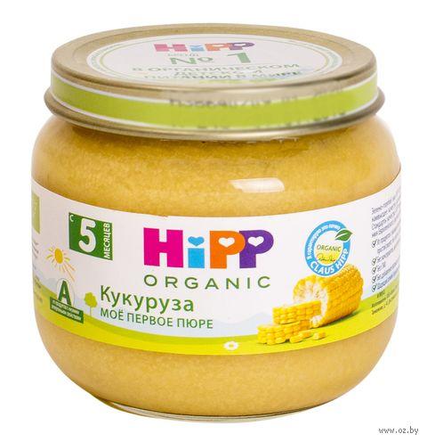 "Детское пюре HiPP ""Кукуруза"" (80 г) — фото, картинка"
