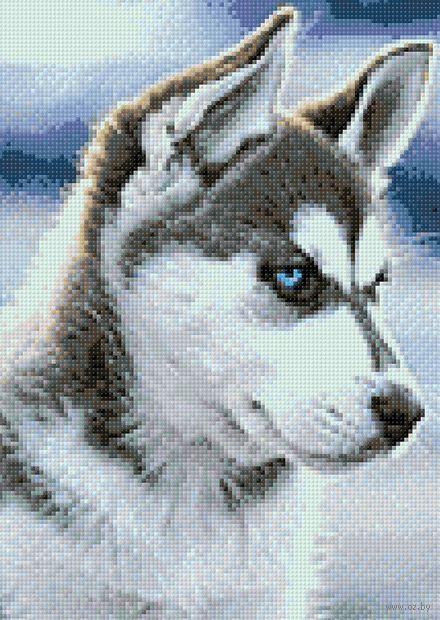 """Алмазная вышивка-мозаика """"Снежный пес"""" (270х380 мм) — фото, картинка"""