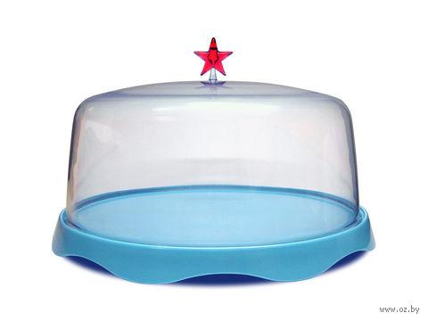 """Тортовница подарочная """"Merry Tray"""" большая (синяя)"""