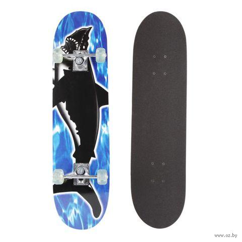 Скейтборд (арт. Т20914)