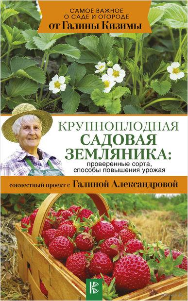 Крупноплодная садовая земляника. Проверенные сорта, способы повышения урожая — фото, картинка
