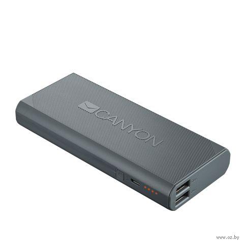 Портативное зарядное устройство Canyon CNE-CPBF100DG — фото, картинка