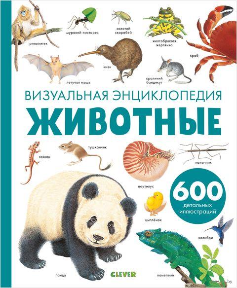 Животные. Визуальная энциклопедия — фото, картинка