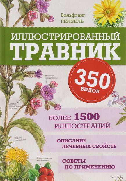 Иллюстрированный травник. 350 видов лекарственных растений — фото, картинка