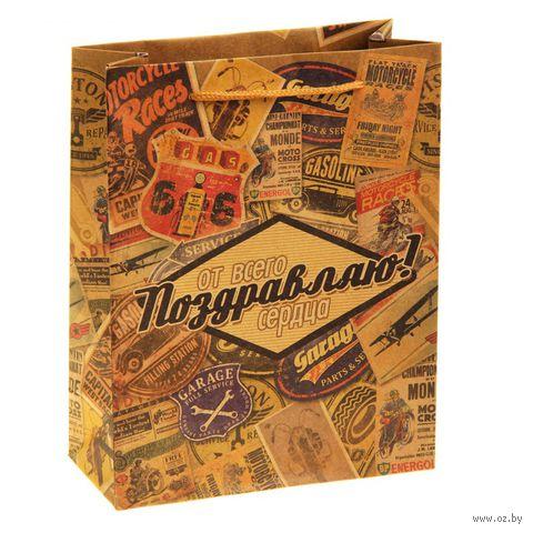 """Пакет бумажный подарочный """"Поздравляю. Ретро"""" (18х23х8 см; арт. 10772296)"""