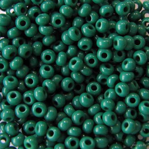 Бисер №53240 (зеленый; 10/0)