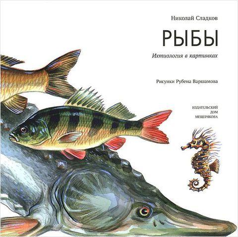 Рыбы. Ихтиология в картинках. Николай Сладков
