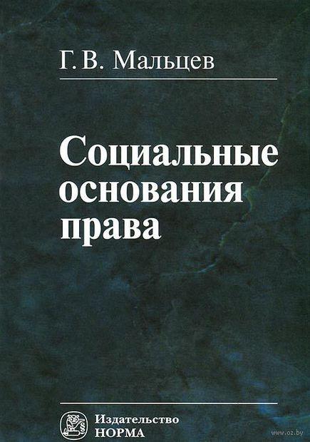 Социальные основания права. Геннадий Мальцев