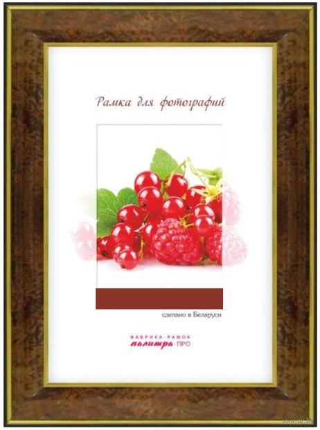 Рамка пластиковая со стеклом (15х21 см; арт. 25/443) — фото, картинка