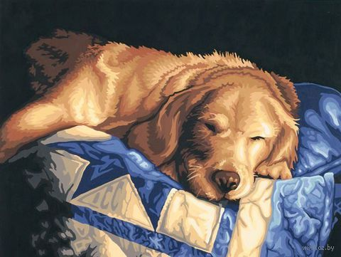 """Картина по номерам """"Послеобеденный сон"""" (280х360 мм; арт. DMS-91300)"""
