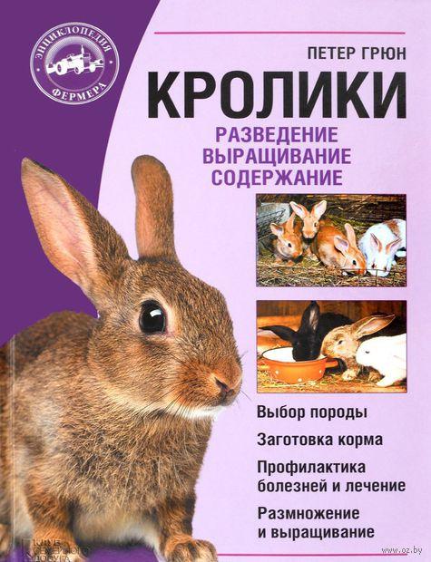 Кролики. Разведение. Выращивание. Содержание — фото, картинка