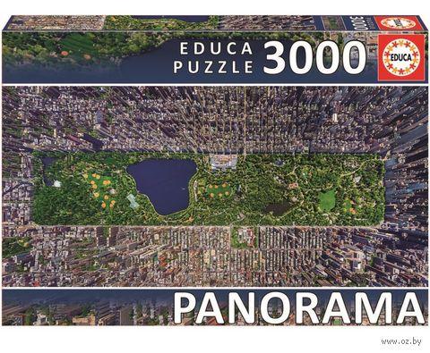 "Пазл ""Центральный парк. Нью-Йорк"" (3000 элементов)"