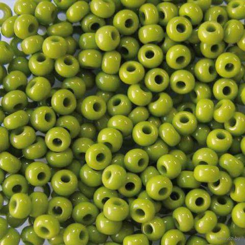 Бисер №53430 (оливковый; 10/0)