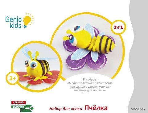 "Набор для лепки из пластилина ""Пчелка"" — фото, картинка"