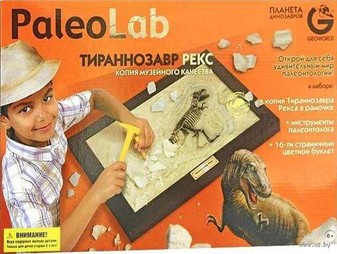 "Набор археолога ""Ископаемые в гипсе. Тираннозавр"" — фото, картинка"