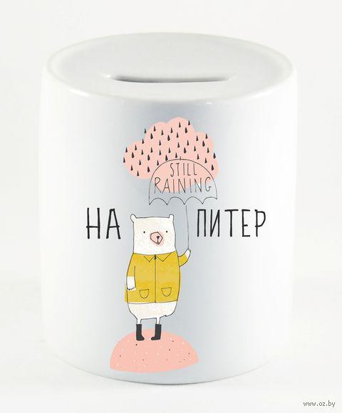 """Копилка """"На Питер"""" (649)"""
