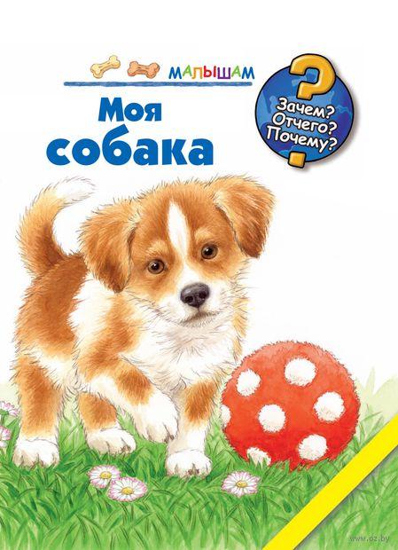 Моя собака — фото, картинка