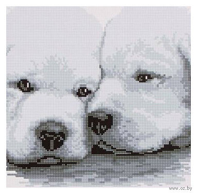 "Алмазная вышивка-мозаика ""Два белых щенка"""