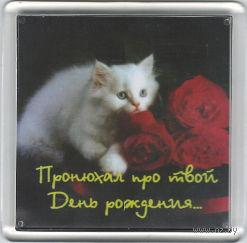 """Магнит """"Пронюхал про твой День рождения"""" (арт. М239)"""