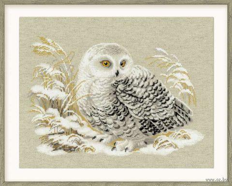 """Вышивка крестом """"Белая сова"""" (450х350 мм) — фото, картинка"""