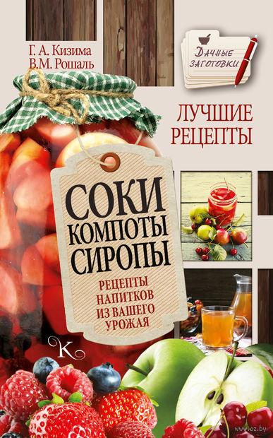 Соки, компоты, сиропы. Лучшие рецепты напитков из вашего урожая. Галина Кизима