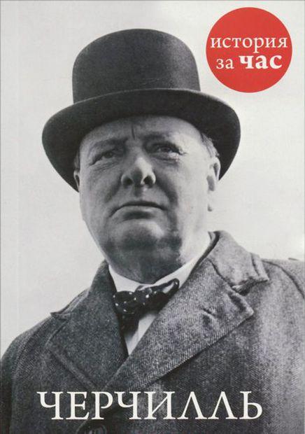 Черчилль. Эндрю Малхолланд