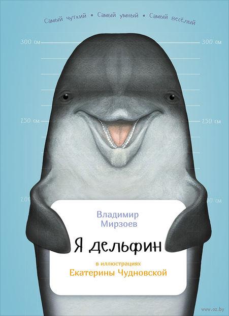 Я дельфин — фото, картинка