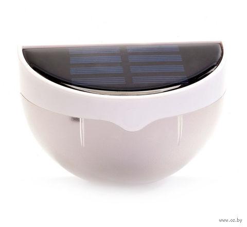 Светильник садовый на солнечной батарее — фото, картинка