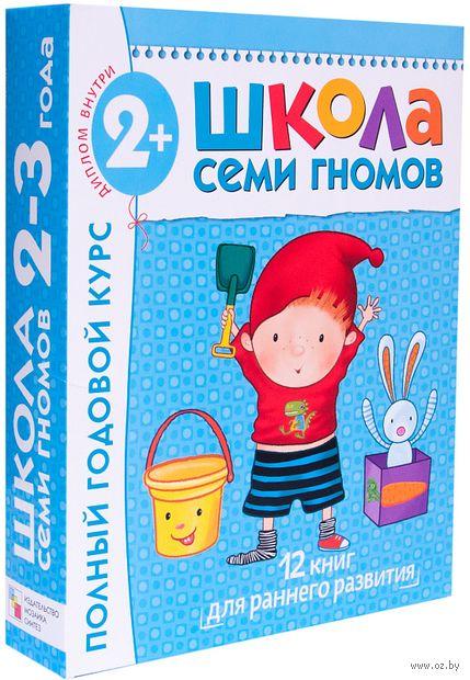 Полный годовой курс. Для занятий с детьми от 2 до 3 лет. Комплект из 12 книг — фото, картинка