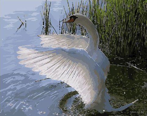 """Картина по номерам """"Красавец лебедь"""" (400х500 мм) — фото, картинка"""