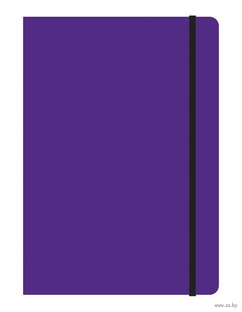 """Тетрадь B5 на резинке в клетку """"Study Up"""" 120 листов (арт. 39498)"""