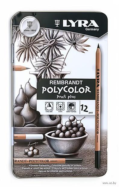 """Набор карандашей художественных """"Lyra Remrandt Polycolor"""" (12 цветов; серые оттенки)"""