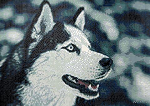 """Алмазная вышивка-мозаика """"Северный друг"""" (270х380 мм) — фото, картинка"""