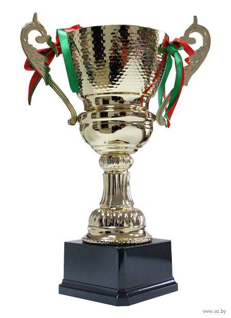 Кубок сувенирный (арт. 4015В) — фото, картинка