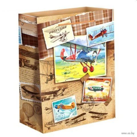 """Пакет бумажный подарочный """"Самолеты"""" (31х40х9 см; арт. 10733182)"""
