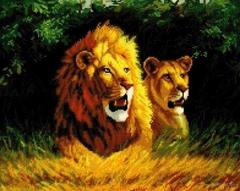 """Алмазная вышивка-мозаика """"Семейство львов"""" (400х500 мм) — фото, картинка"""