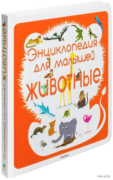 Животные. Энциклопедия для малышей. Сильви Безюэль