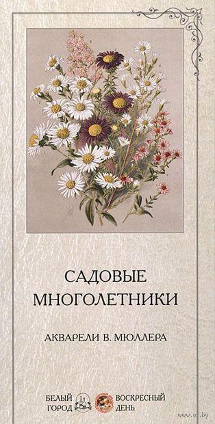 Садовые многолетники. Екатерина Малинина