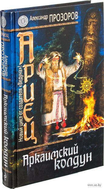 Ариец. Книга первая. Аркаимский колдун. Александр Прозоров