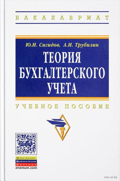 Теория бухгалтерского учета. Александр Трубилин, Юрий Сигидов