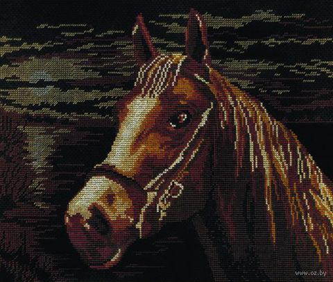 """Вышивка крестом """"Лошадь"""""""