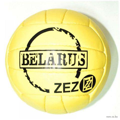 Мяч волейбольный (арт. VOL-Z) — фото, картинка