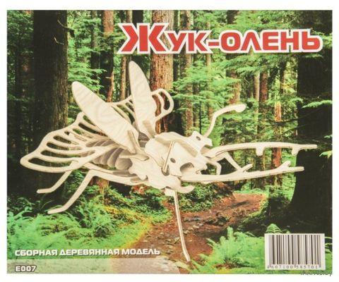 """Сборная деревянная модель """"Жук-олень"""" — фото, картинка"""