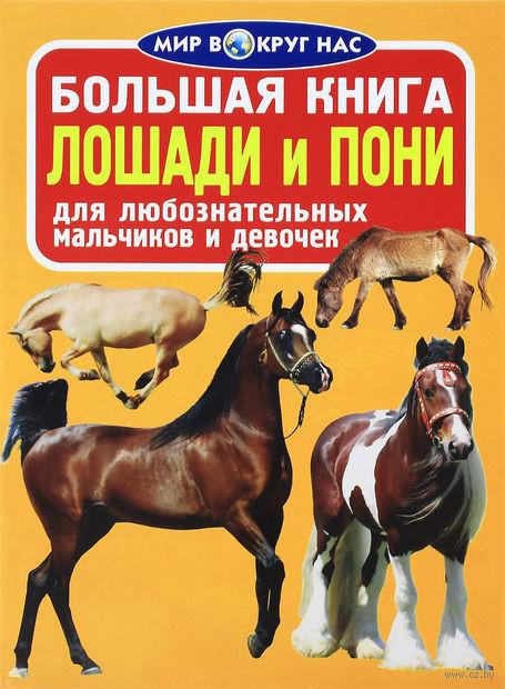 Большая книга. Лошади и пони — фото, картинка