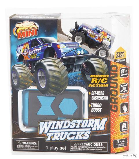 """Автомобиль на радиоуправлении """"Windstorm Truck"""" (арт. LB0101)"""