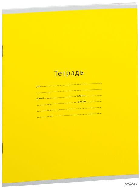 """Тетрадь в линейку """"Одноцветная. Intensive"""" (24 листа; в ассортименте)"""