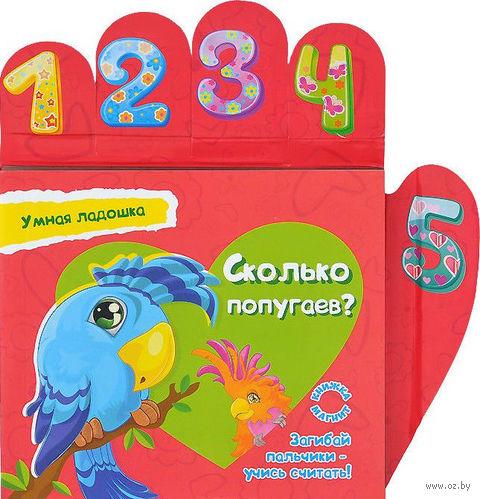Сколько попугаев? Книжка-магнит. Юлия Юга