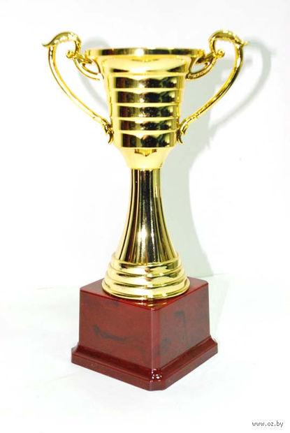 Кубок сувенирный (арт. HB2006-B) — фото, картинка