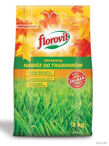 Удобрение осеннее для газона (3 кг) — фото, картинка