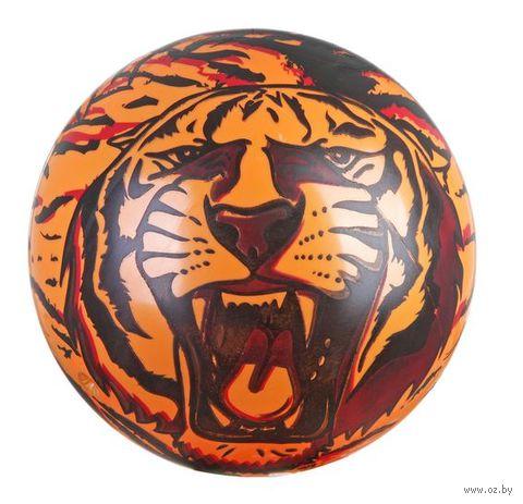 Мяч (17 см; арт. Т47163)